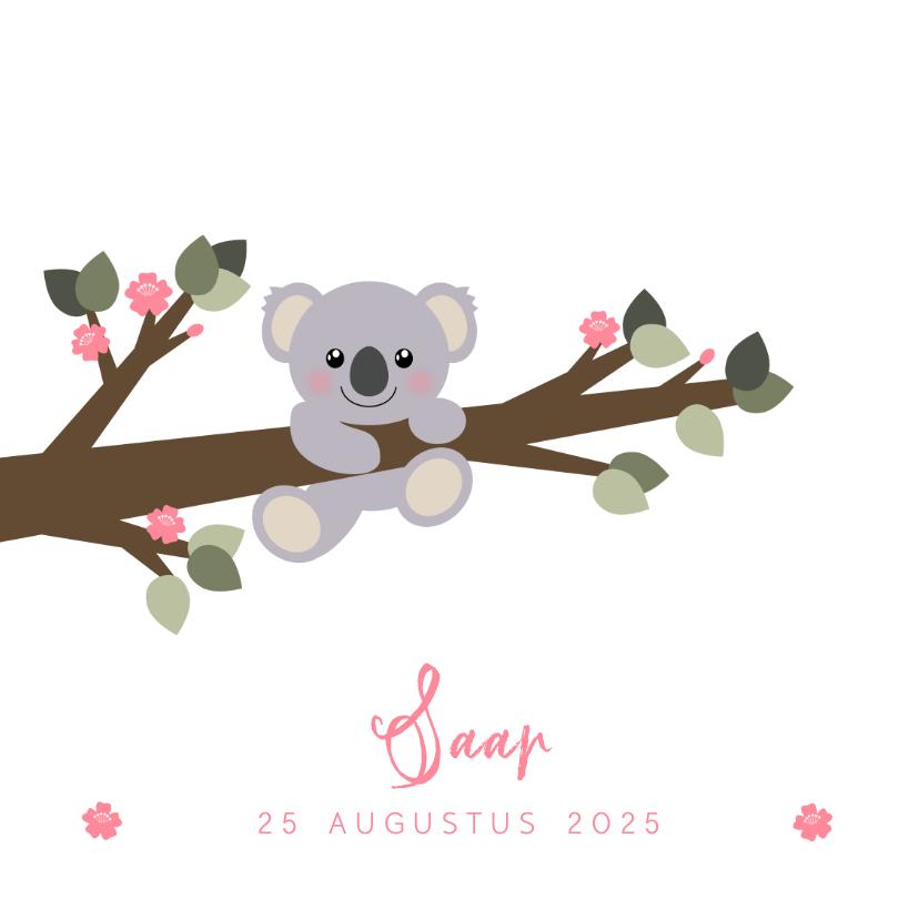 Geboortekaartjes - Geboortekaartje koala aan een tak illustratie
