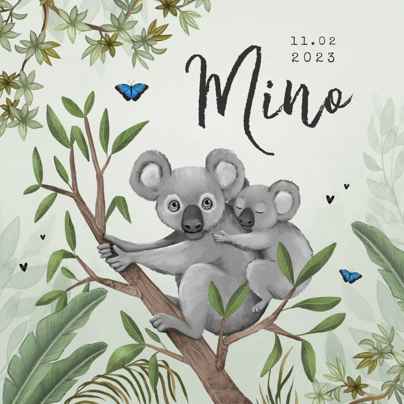 Geboortekaartjes - Geboortekaartje koala jungle baby groen vlinders