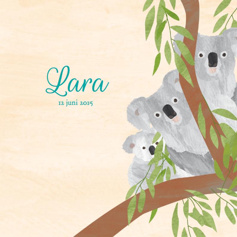 Geboortekaartjes - Geboortekaartje koala kangoeroe