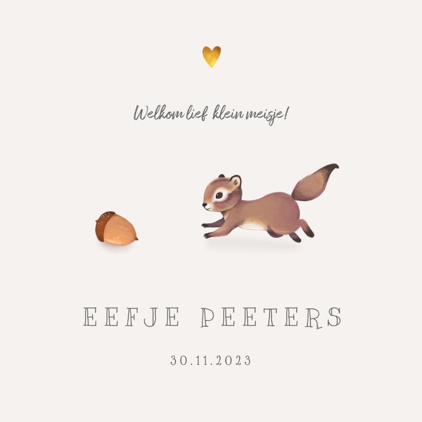 Geboortekaartjes - Geboortekaartje lief herfst met schattig eekhoorntje