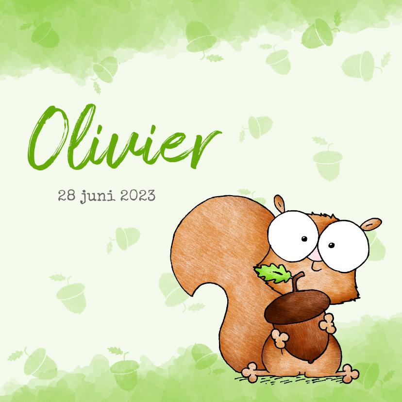 Geboortekaartjes - Geboortekaartje lief klein eekhoorntje