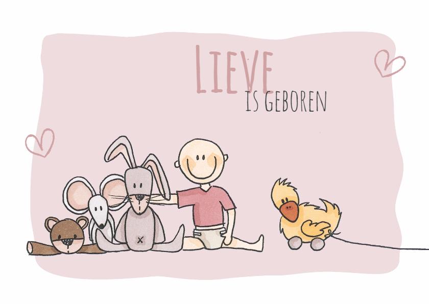 Geboortekaartjes - Geboortekaartje Lief LFZ
