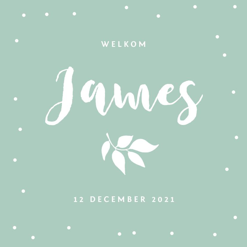 Geboortekaartjes - Geboortekaartje lief met confetti en blaadje
