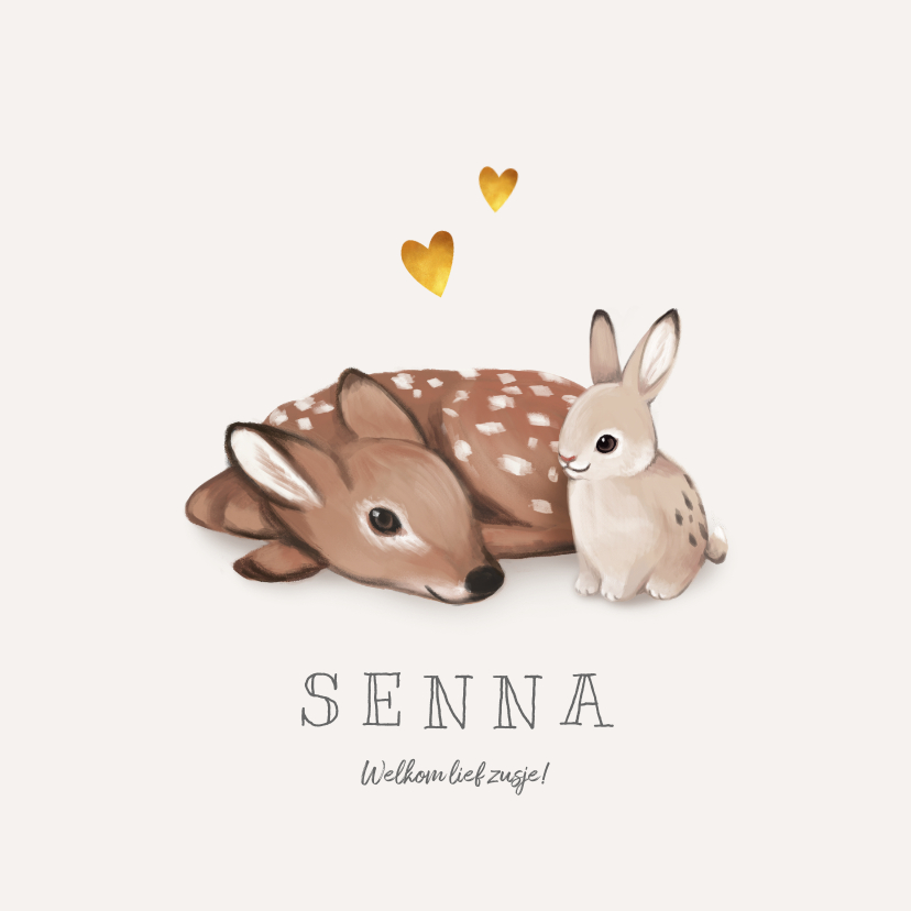 Geboortekaartjes - Geboortekaartje lief met konijn en hert voor broertje/zusje