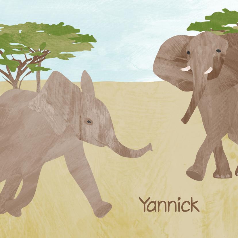 Geboortekaartjes - Geboortekaartje lief olifantje