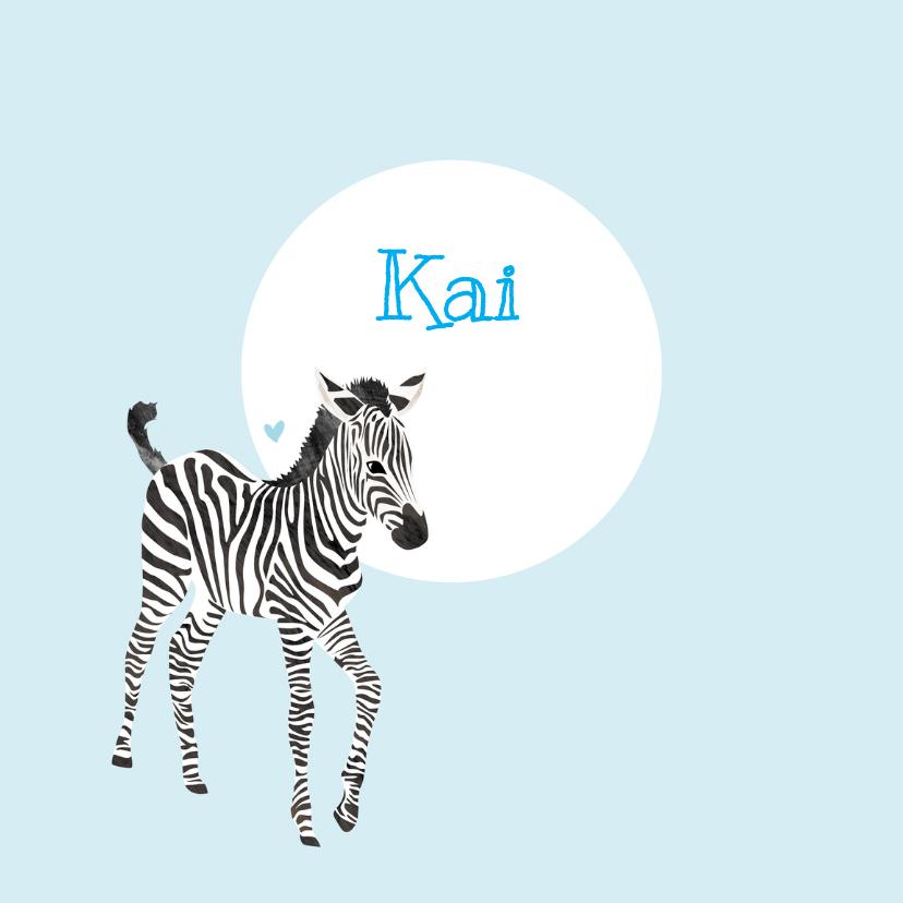 Geboortekaartjes - Geboortekaartje lieve zebra