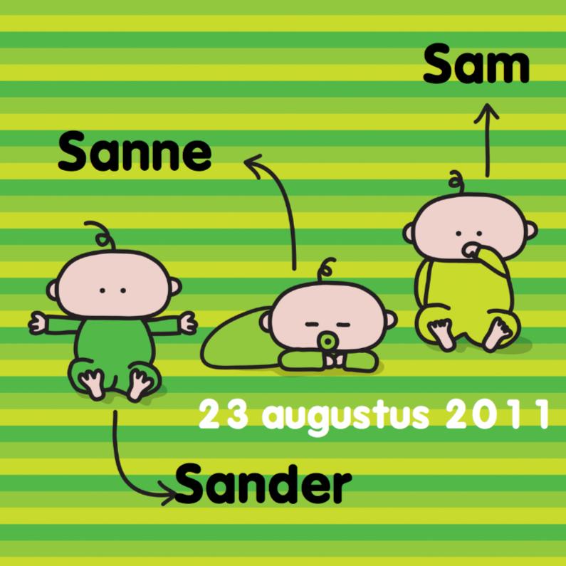 Geboortekaartjes - Geboortekaartje Meerling Groen