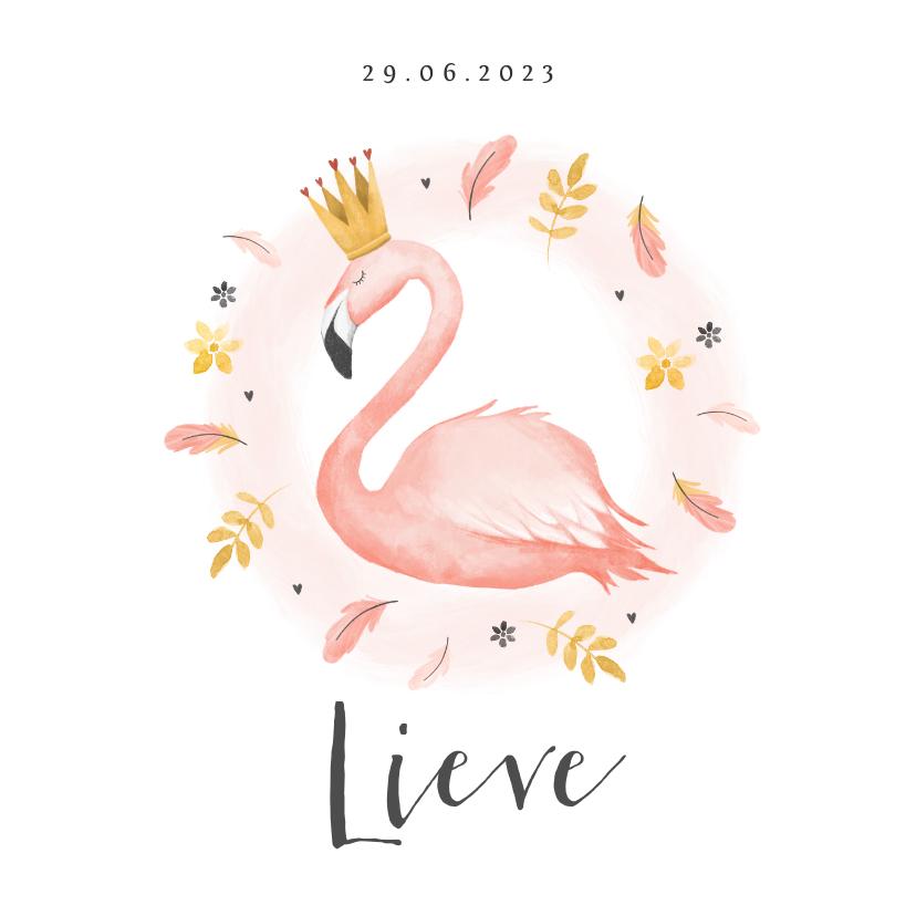 Geboortekaartjes - Geboortekaartje meisje flamingo veertjes verf kroontje