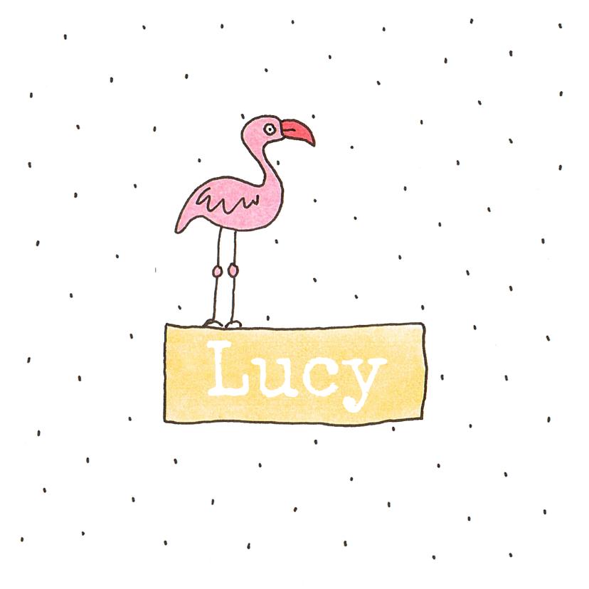 Geboortekaartjes - geboortekaartje meisje flamingo