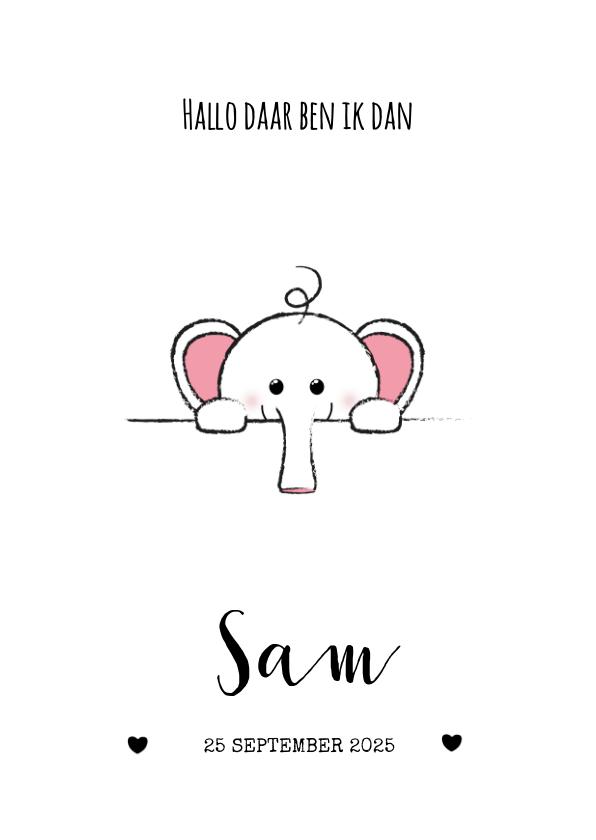 Geboortekaartjes - Geboortekaartje met een lief olifantje