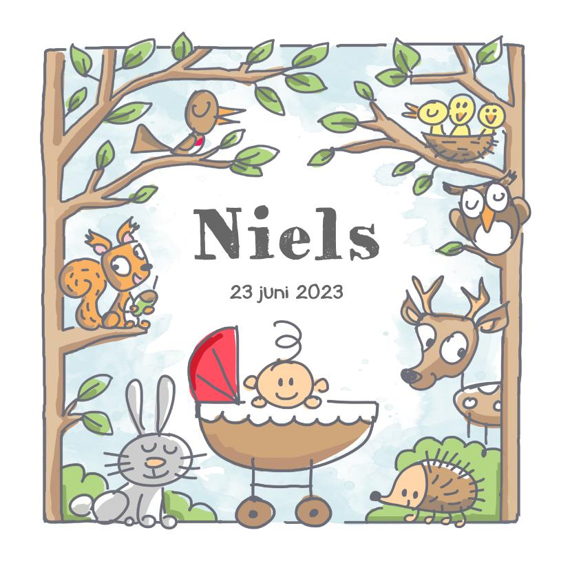 Geboortekaartjes - Geboortekaartje met jongen in bos met dieren