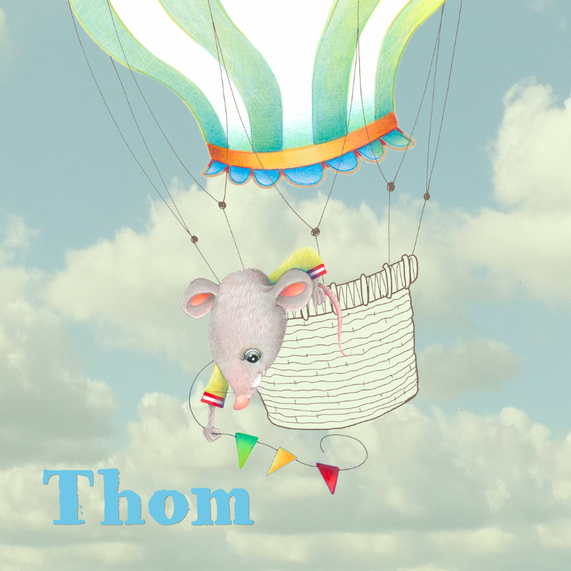 Geboortekaartjes - Geboortekaartje met luchtballon