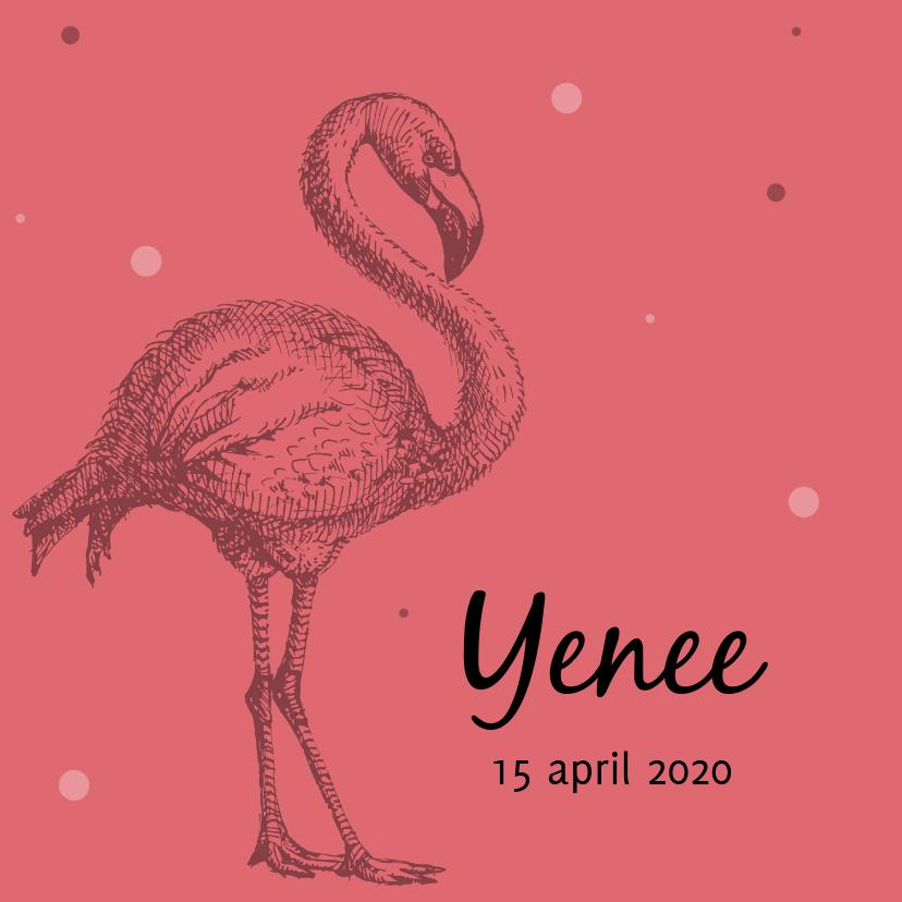 Geboortekaartjes - Geboortekaartje met mooie flamingo