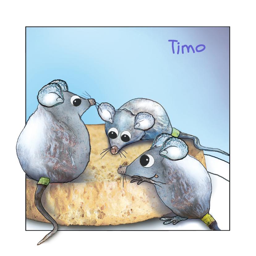 Geboortekaartjes - Geboortekaartje met muisjes Timo