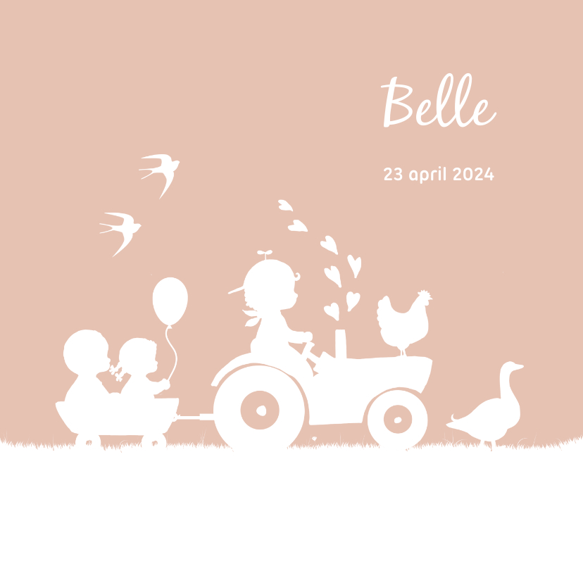 Geboortekaartjes - Geboortekaartje met trekker met twee broertjes en een zusje