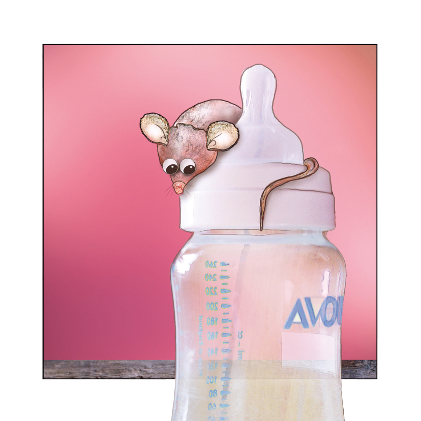 Geboortekaartjes - Geboortekaartje Muisje op fles