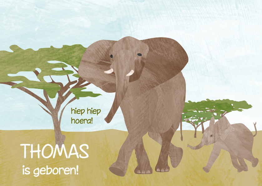 Geboortekaartjes - Geboortekaartje olifant jongen