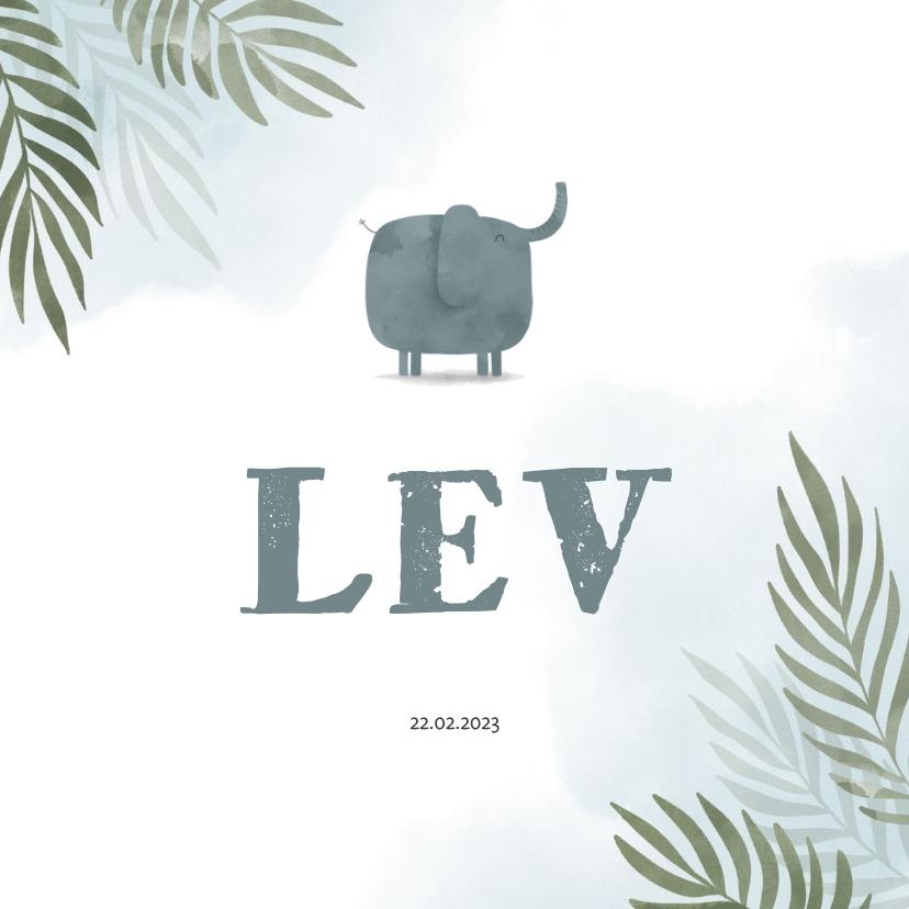 Geboortekaartjes - Geboortekaartje olifant jungle met waterverf