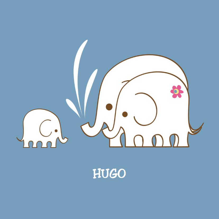 Geboortekaartjes - geboortekaartje-olifantenfam-PF