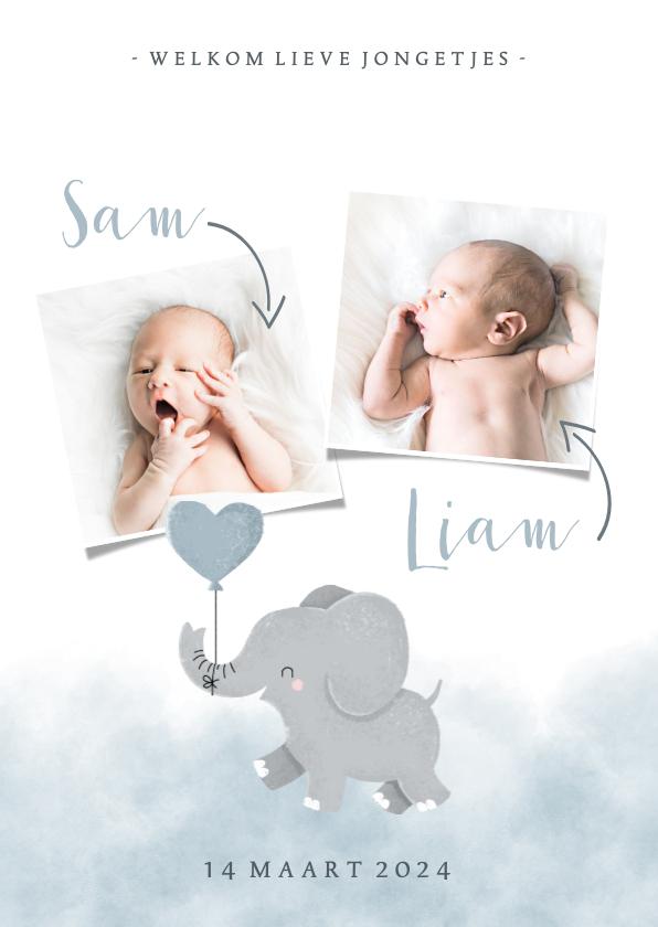 Geboortekaartjes - Geboortekaartje olifantje tweeling met en waterverf