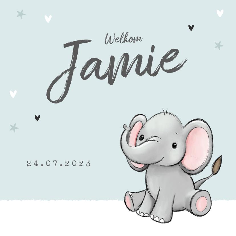 Geboortekaartjes - geboortekaartje olifantje unisex hartjes sterretjes