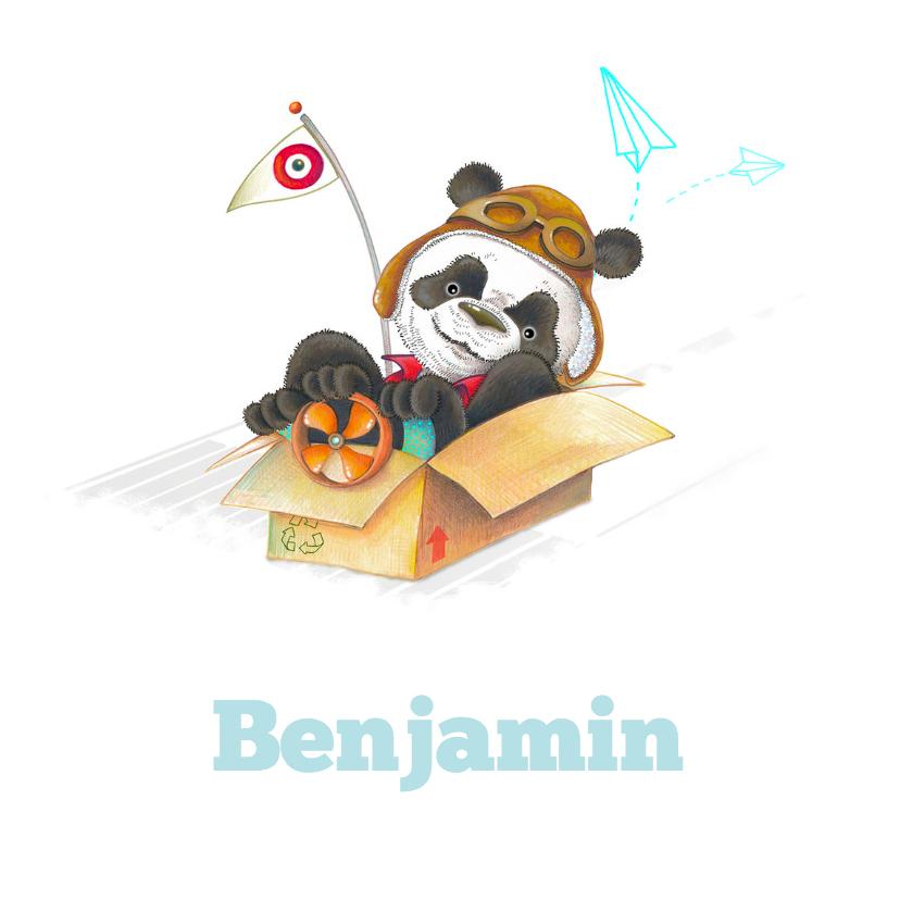 Geboortekaartjes - Geboortekaartje panda als piloot
