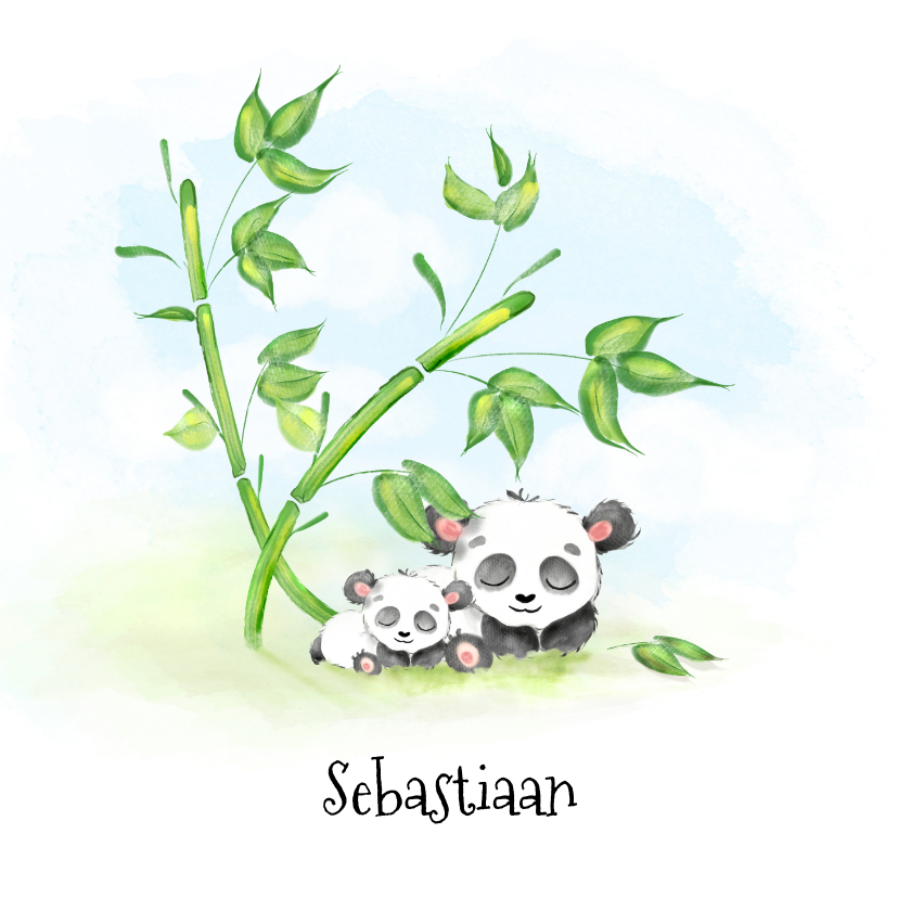 Geboortekaartjes - Geboortekaartje panda met bamboe
