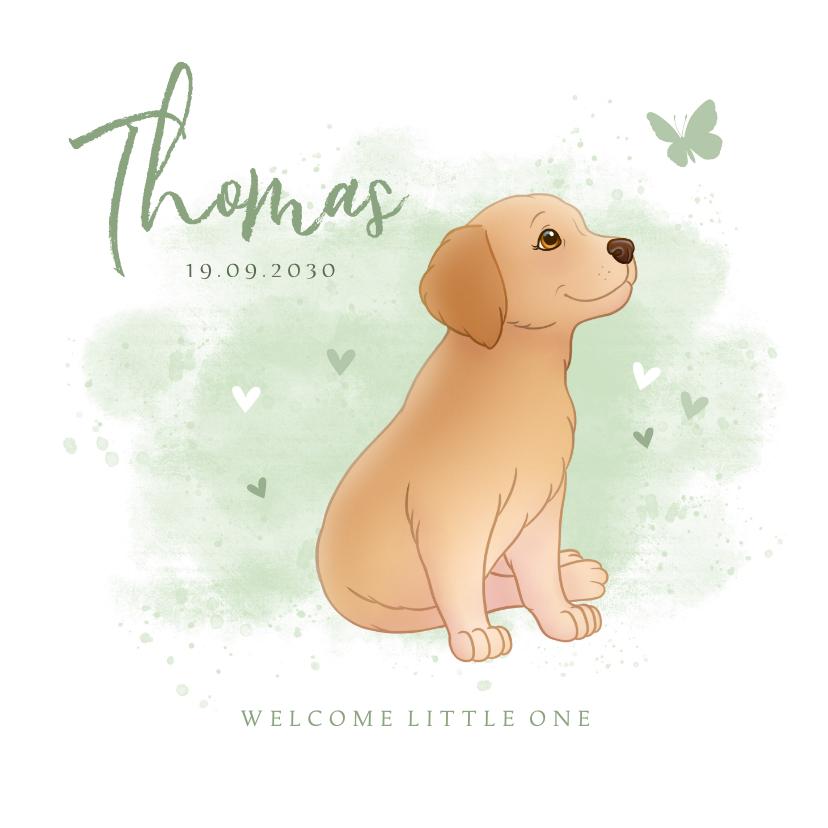 Geboortekaartjes - Geboortekaartje puppy groene achtegrond met hartjes vlinder