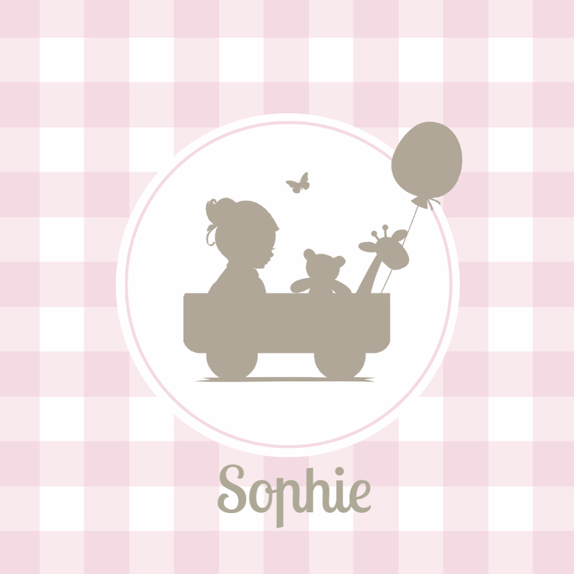 Geboortekaartjes - Geboortekaartje ruit silhouet