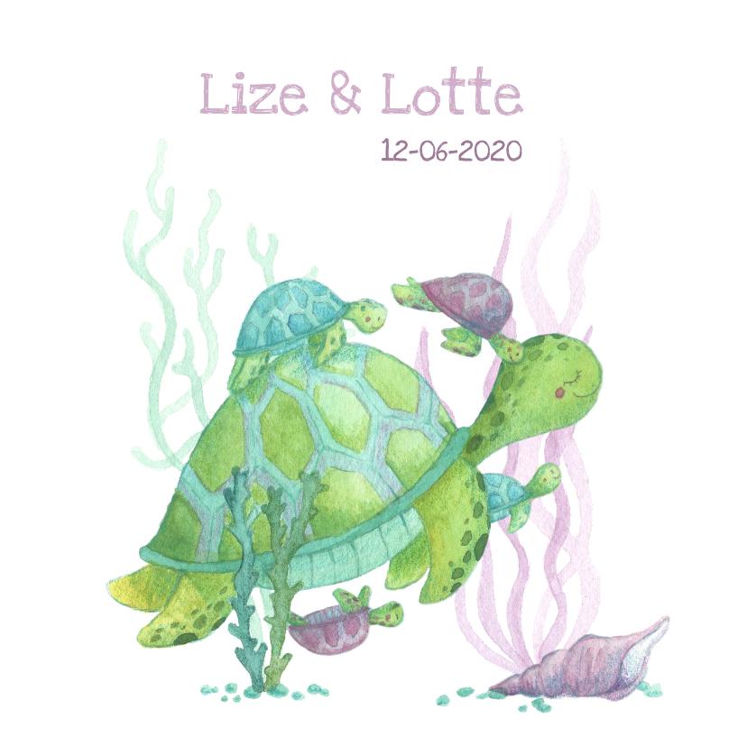 Geboortekaartjes - Geboortekaartje schildpadjes meerling