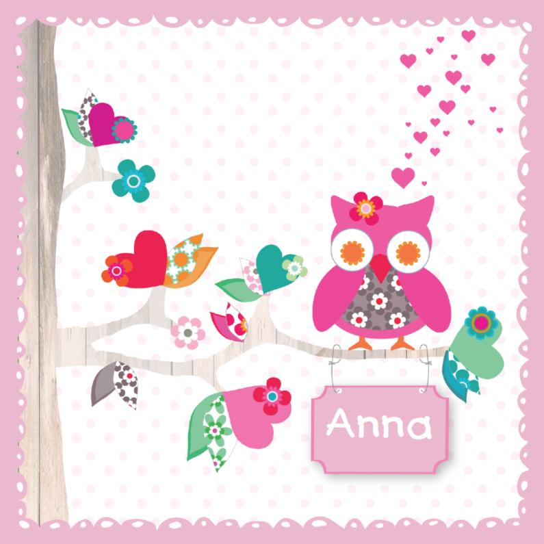 Geboortekaartjes - Geboortekaartje Stip Uil Anna