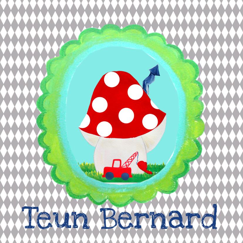 Geboortekaartjes - Geboortekaartje TeunBernard PA