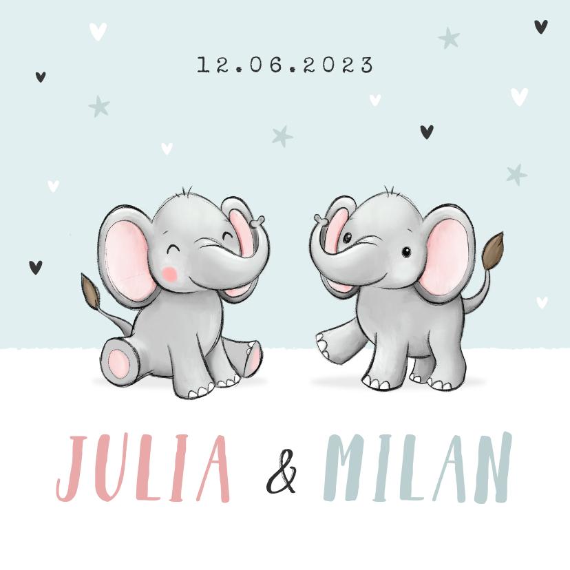 Geboortekaartjes - Geboortekaartje tweeling broertje zusje olifantjes