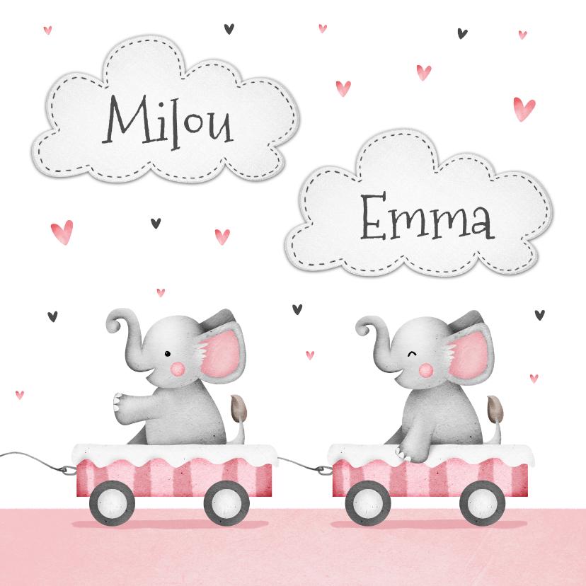 Geboortekaartjes - Geboortekaartje tweeling olifantjes roze hartjes wolkjes