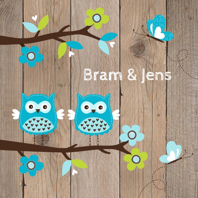 Geboortekaartjes - Geboortekaartje tweeling uiltjes blauw - LB