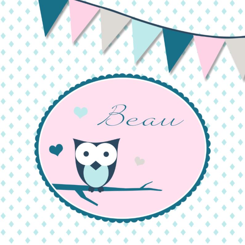 Geboortekaartjes - Geboortekaartje uil in pastel