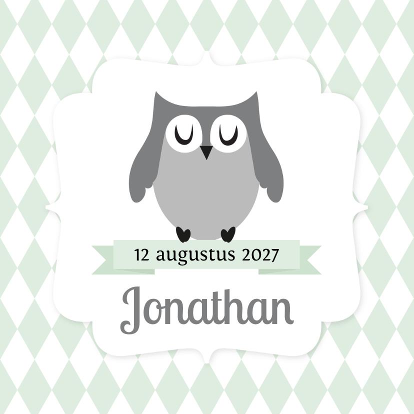 Geboortekaartjes - Geboortekaartje uiltje ruitjes