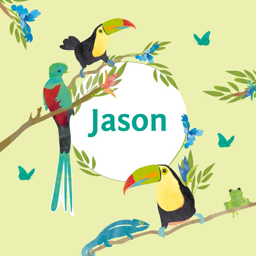 Geboortekaartjes - Geboortekaartje vogels in jungle