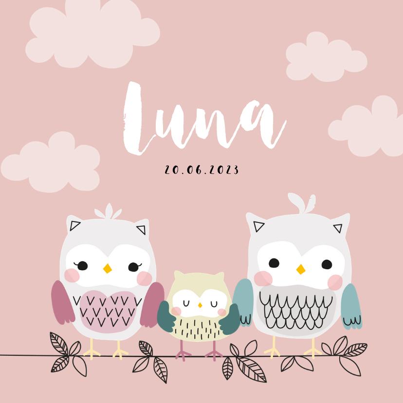 Geboortekaartjes - Geboortekaartje voor een meisje met uilenfamilie
