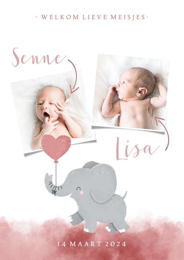 Geboortekaartjes - Geboortekaartje voor een tweeling met olifantje met ballon