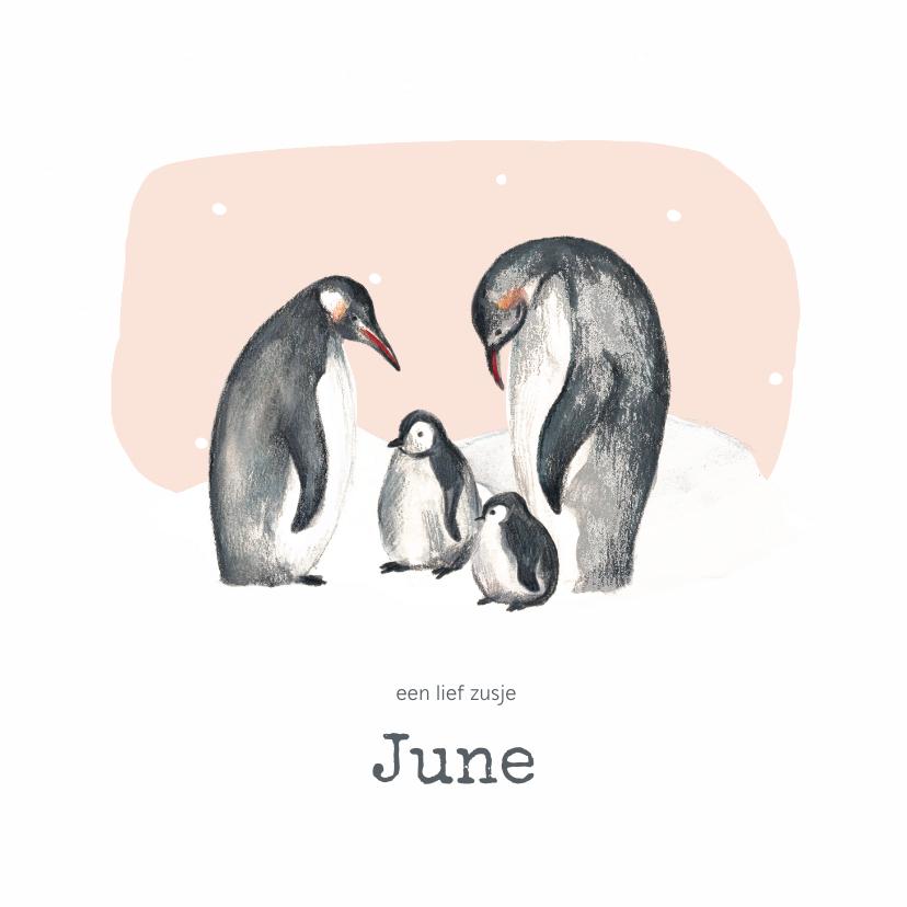 Geboortekaartjes - Geboortekaartje winter pinguins tweede kindje