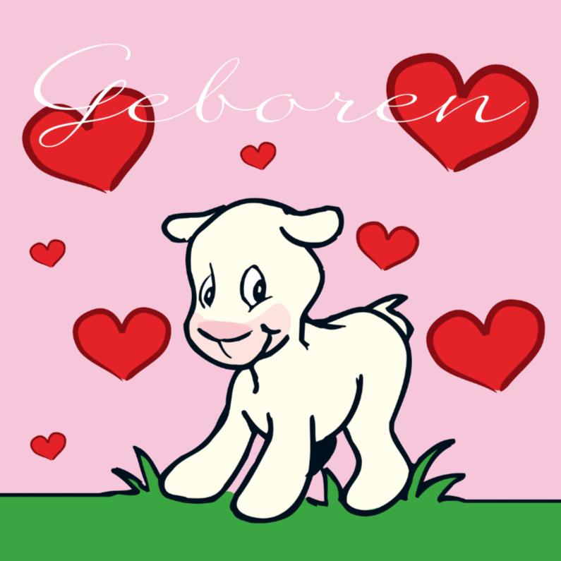 Geboortekaartjes - Geboren geitje roze MS