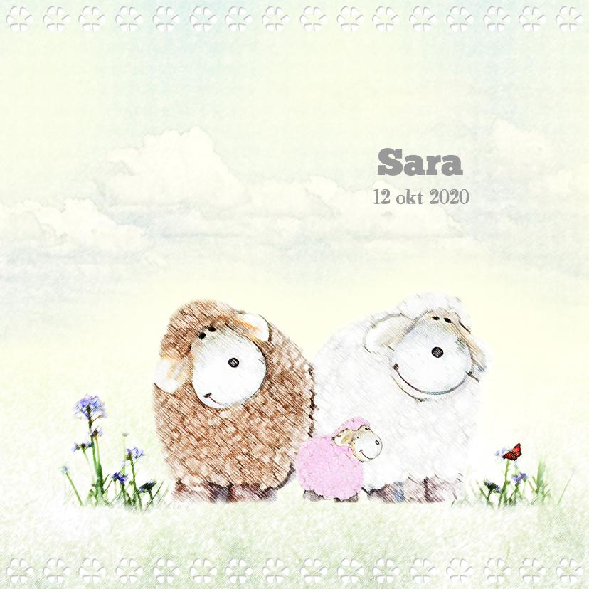 Geboortekaartjes - Geboren meisje - schaapjes