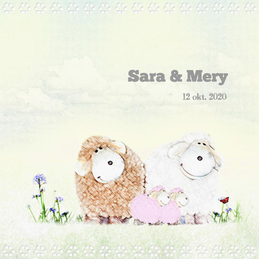 Geboortekaartjes - Geboren tweeling meisjes - schaapjes