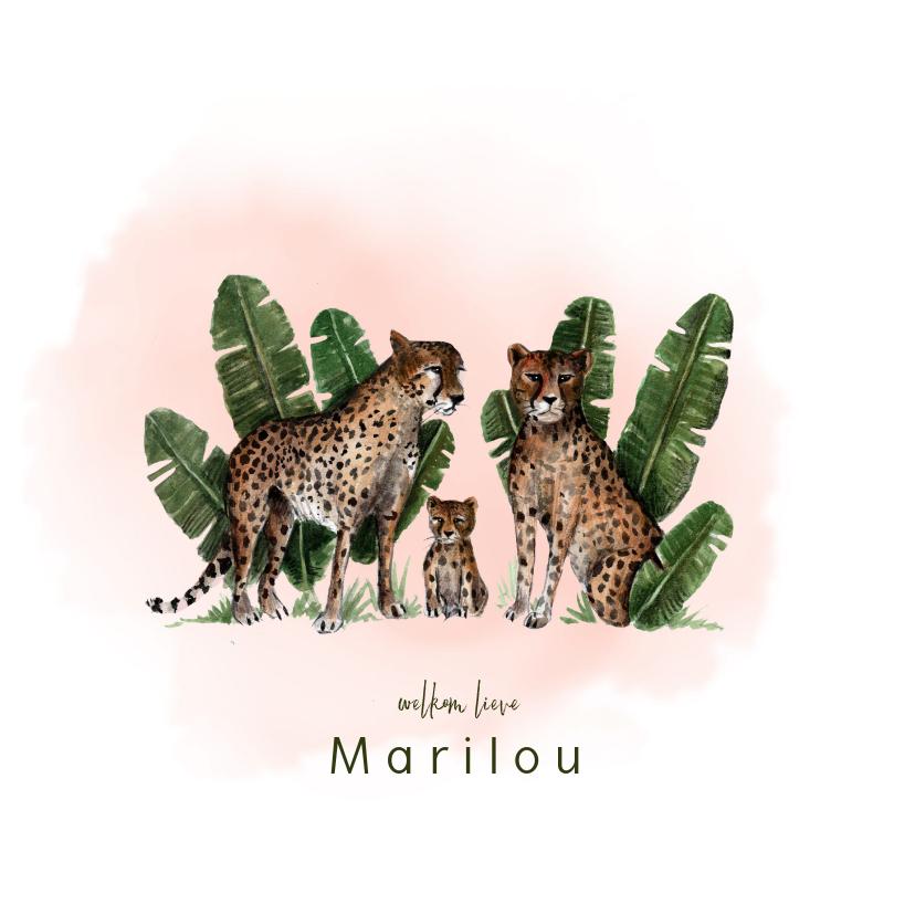 Geboortekaartjes - Getekend geboortekaartje met luipaarden en een kleintje