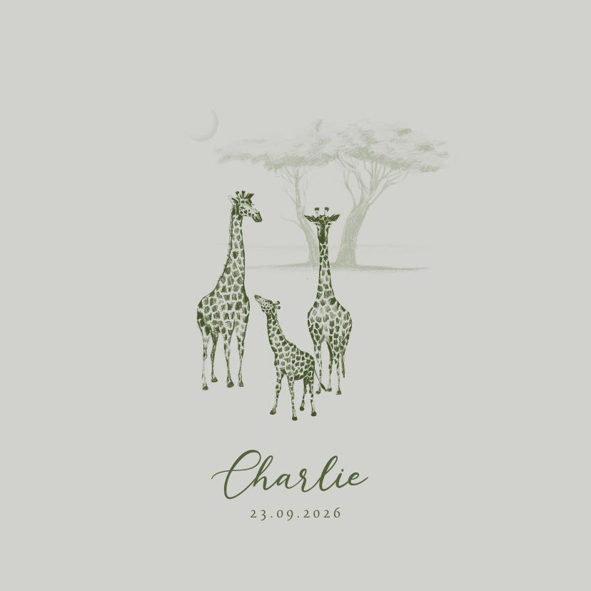 Geboortekaartjes - Groen geboortekaartje jungle drie giraffen getekend