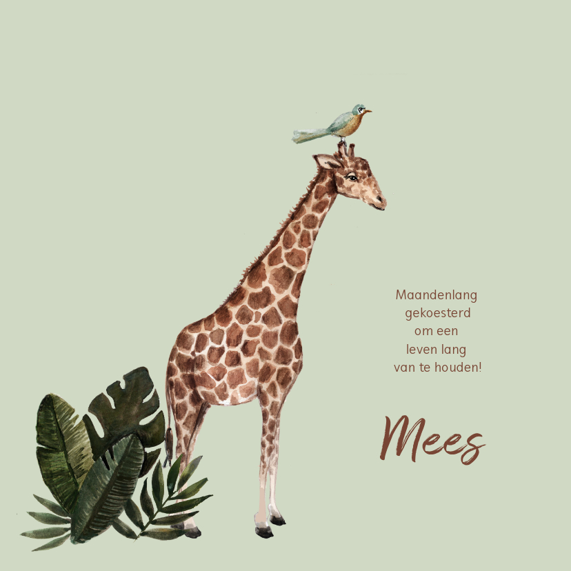 Geboortekaartjes - Groen geboortekaartje met een giraffe