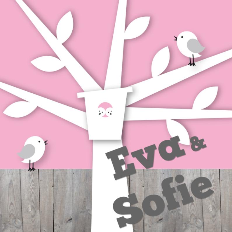 Geboortekaartjes - Happy Birds Tweeling Meisjes