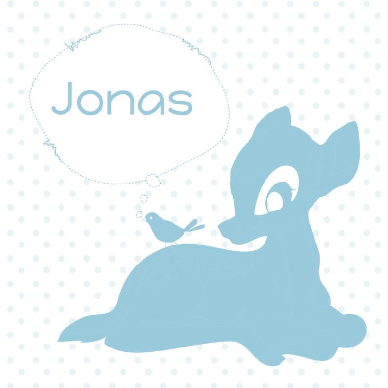 Geboortekaartjes - Hip geboortekaartje hert Jonas