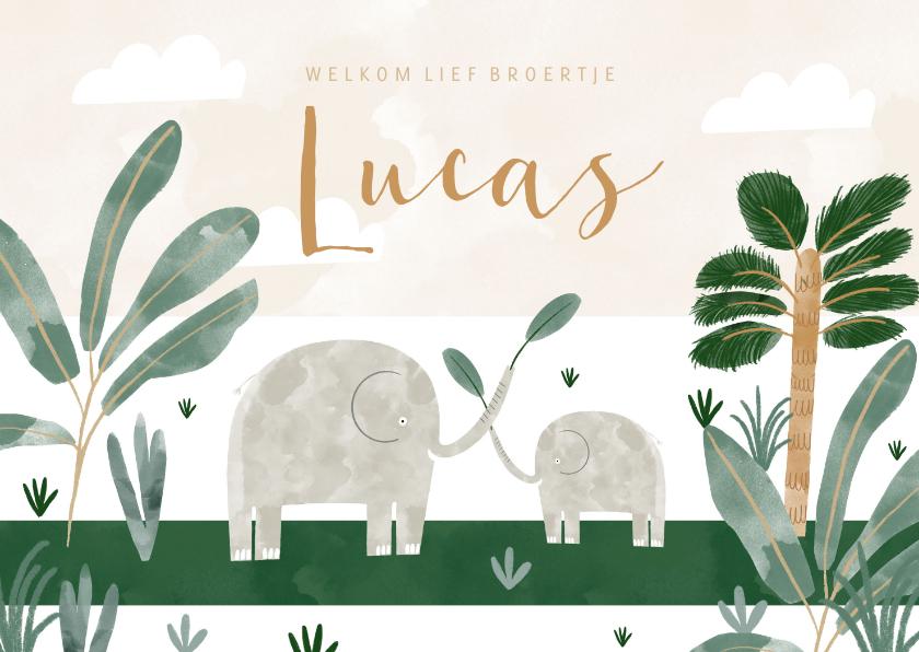 Geboortekaartjes - Hip geboortekaartje olifantjes jungle met welkom broertje